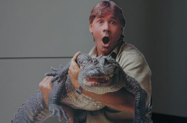 19788289_dc4c4956c5_b_Crocodile-Hunter