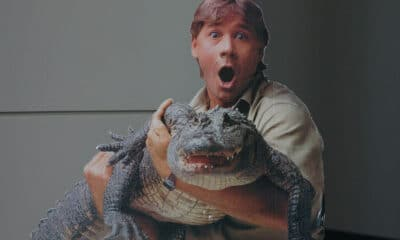 Steve Irwin: un ricordo a 10 anni dalla morte 19788289 dc4c4956c5 b Crocodile Hunter 1 400x240